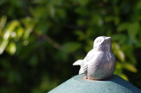 130516_鳥.JPG