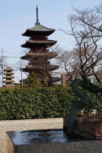130711_池上本門寺7.jpg