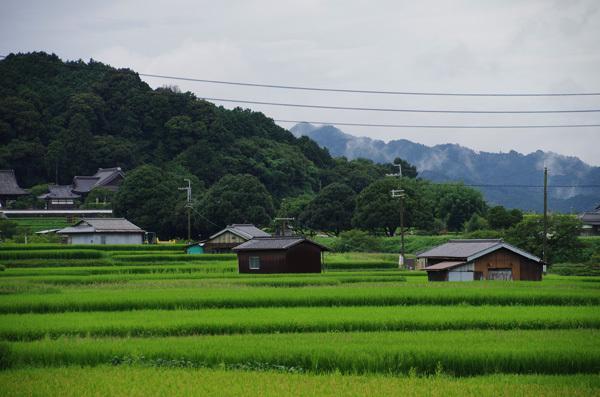 140102_明日香村3.JPG