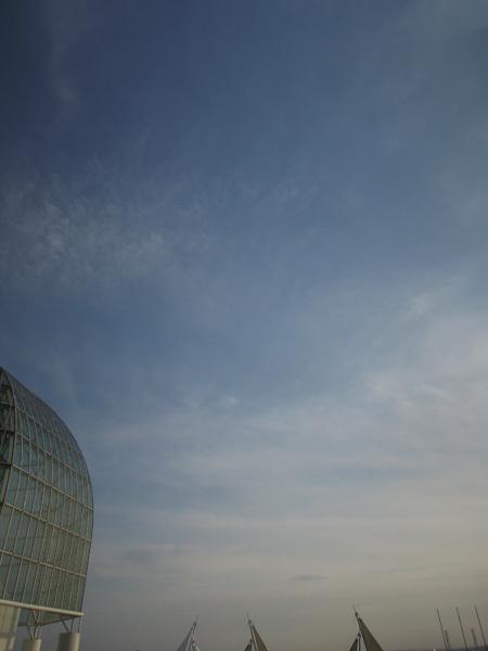 140107_葛西臨海水族園3.JPG
