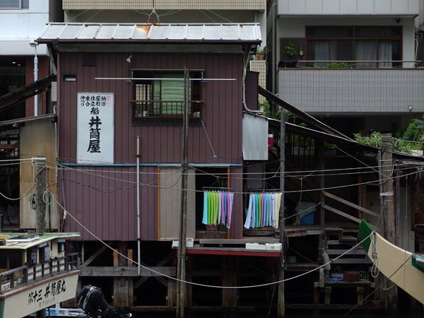 140906_神田川3.JPG