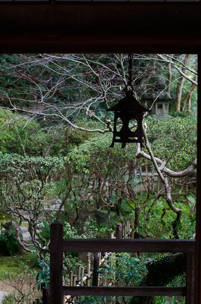 160324_臥龍山荘6.jpg