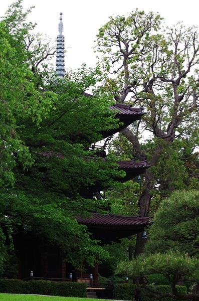 160428_椿山荘2.jpg