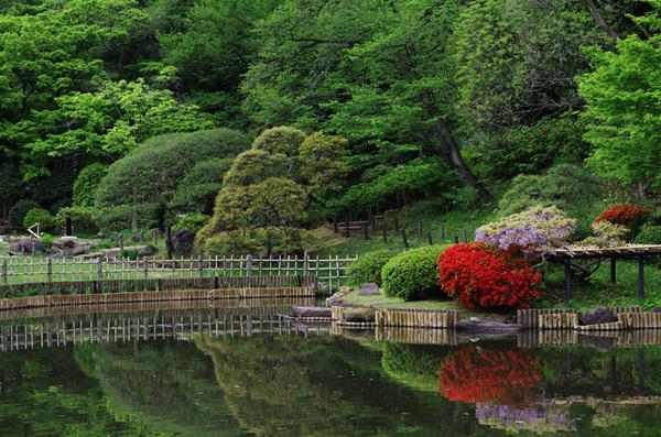 160429_新江戸川公園3.jpg