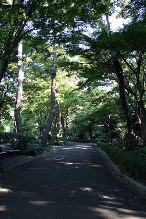 松の廊下跡2.jpg
