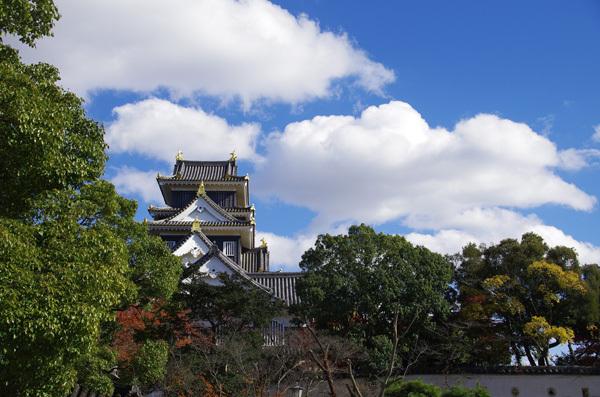 131203_岡山城5.JPG