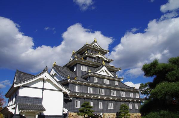 131203_岡山城8.JPG