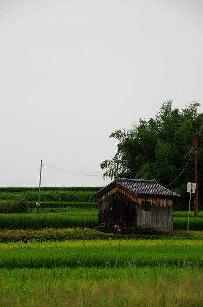 140102_明日香村1.jpg