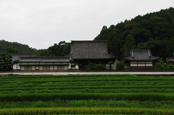 140102_橘寺2.JPG