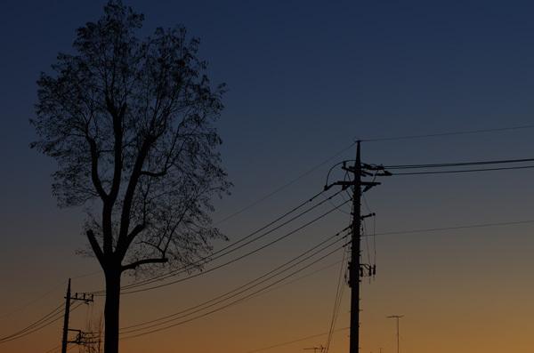 140120_ある日の夕景2.JPG