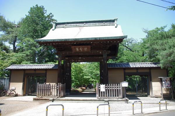140213_豪徳寺1.JPG