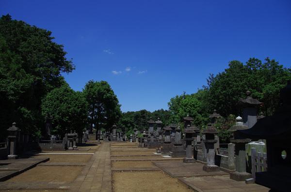 140213_豪徳寺6.JPG
