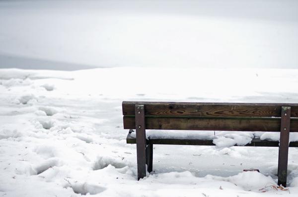 140215_雪景色1.JPG