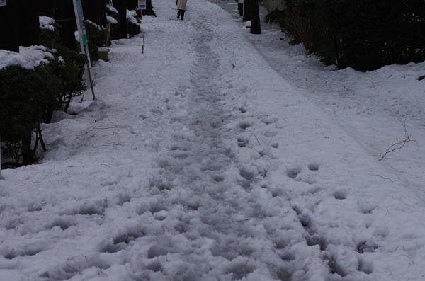 140215_雪景色2.JPG
