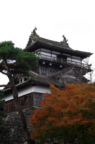 151201_丸岡城2.jpg