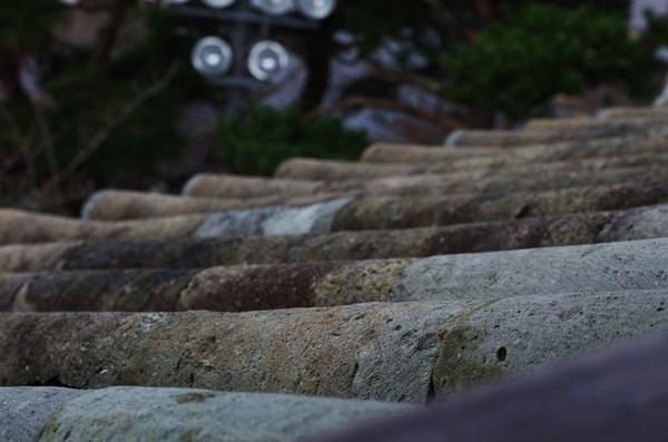 151201_丸岡城7.JPG