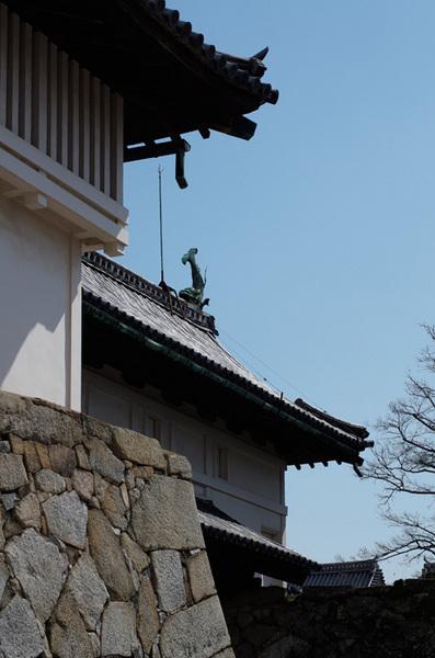 160229_佐賀城4.jpg