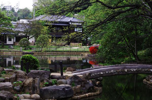 160429_新江戸川公園2.jpg