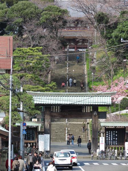2012.3.17池上本門寺1.jpg
